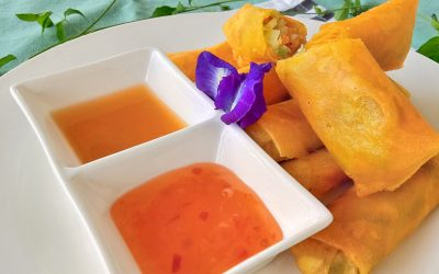 Vegetable Spring Rolls Vegan Recipe: Easy and Delicious